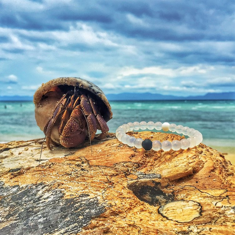 No reason to feel crabby today #livelokai Thanks @Thomito12