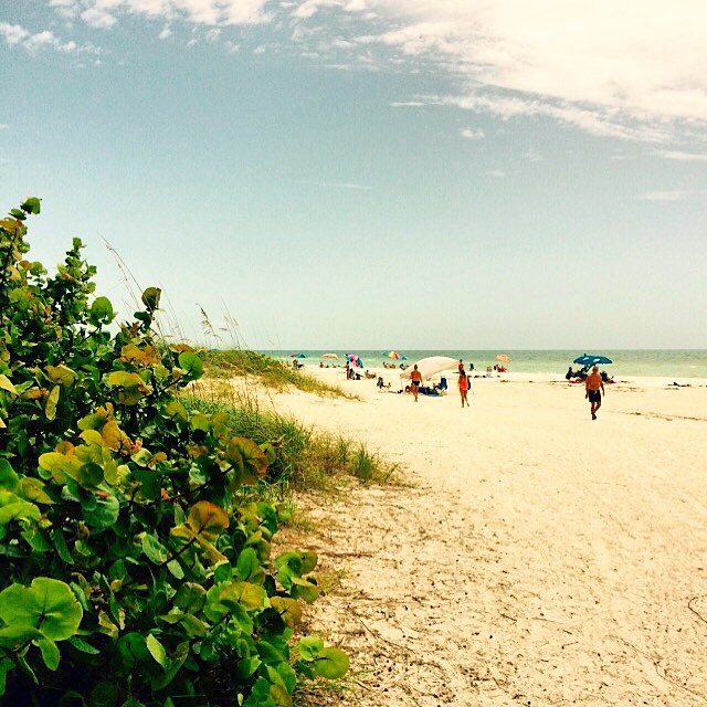 @annamariaisland on the west coast of Florida! @westcoastsurfshop #uluLAGOON