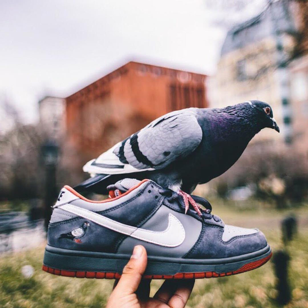 Kind of amazing @insighting pulled this off. #Nike #dunks #sneakerheads