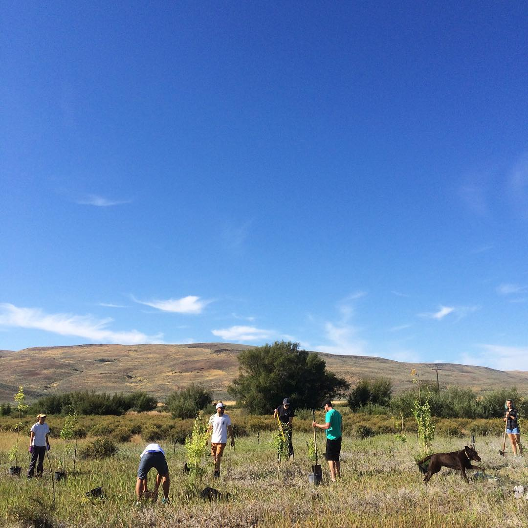Our team spent the morning at Silver Creek Preserve with The Nature Conservancy planting trees and making seed bombs.  We're grateful for the people who dedicate their lives to preserving wildlife especially here in Idaho. Thanks to TNC we have even...