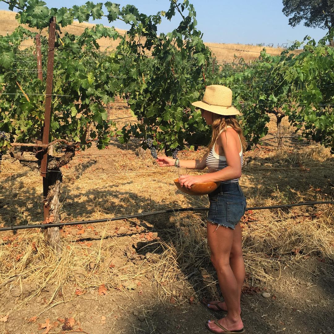 Summertime, and the livins' easy #Napa #farmlife #summer #vineyard