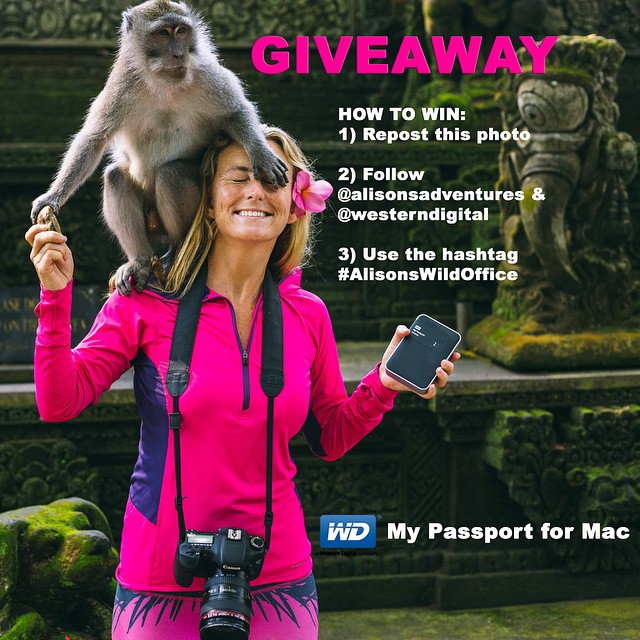 WIN A @westerndigital #MyPassport HARD DRIVE EVERY DAY THIS THIS WEEK!