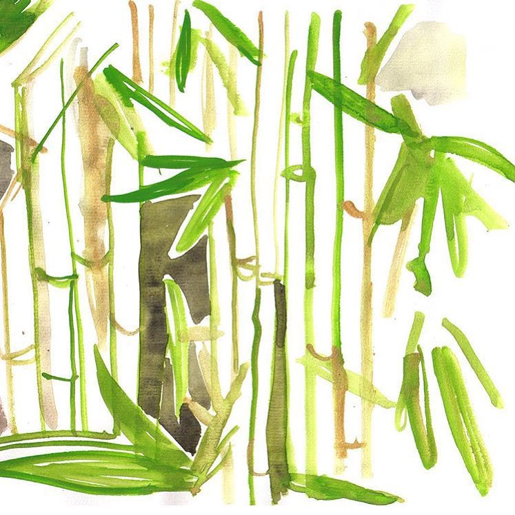 Bamboozled // illustration by saltwater sister @nataliaresmini // #AllSwell