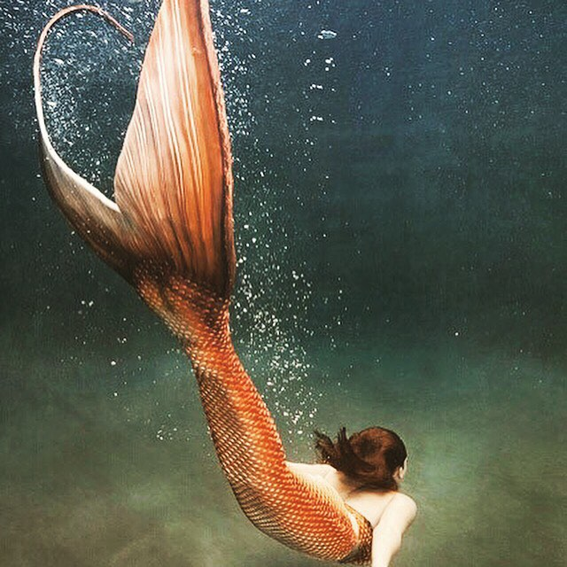 "I must be a #mermaid , I have no fear of depths, and a great fear of shallow living."" #luvsurf #liveyourlife #getbusyliving #dive #deep #explore"