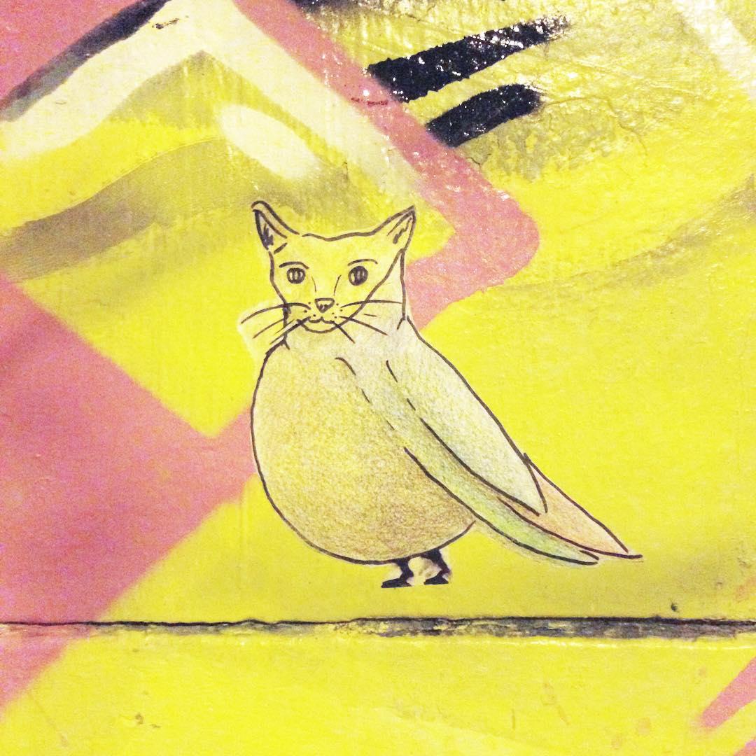 Cat-pio #cat #bird #pasteup #streetart #palermo #gato #pajaro