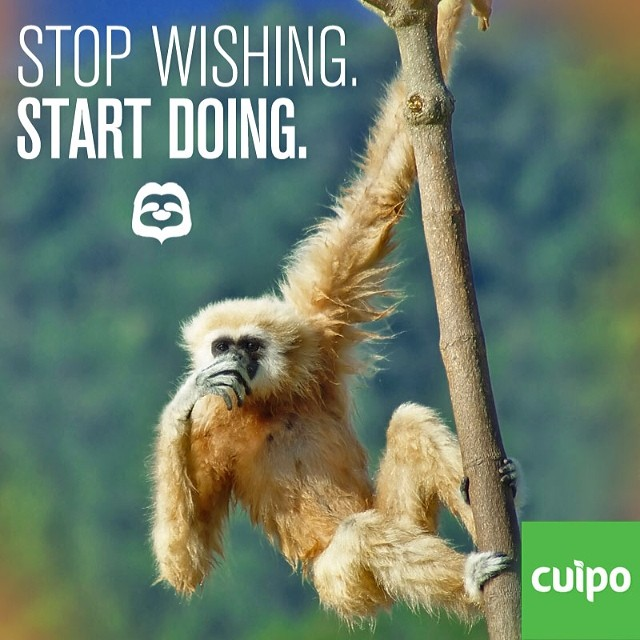 #cuipo #saverainforest Every product sold saves rainforest. Check out Cuipo.org today.