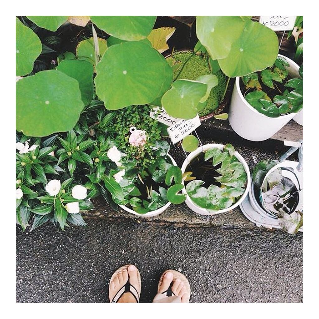 @angelamoyra exploring the streets & alleyways of Japan in the #BananaWeave sandal.