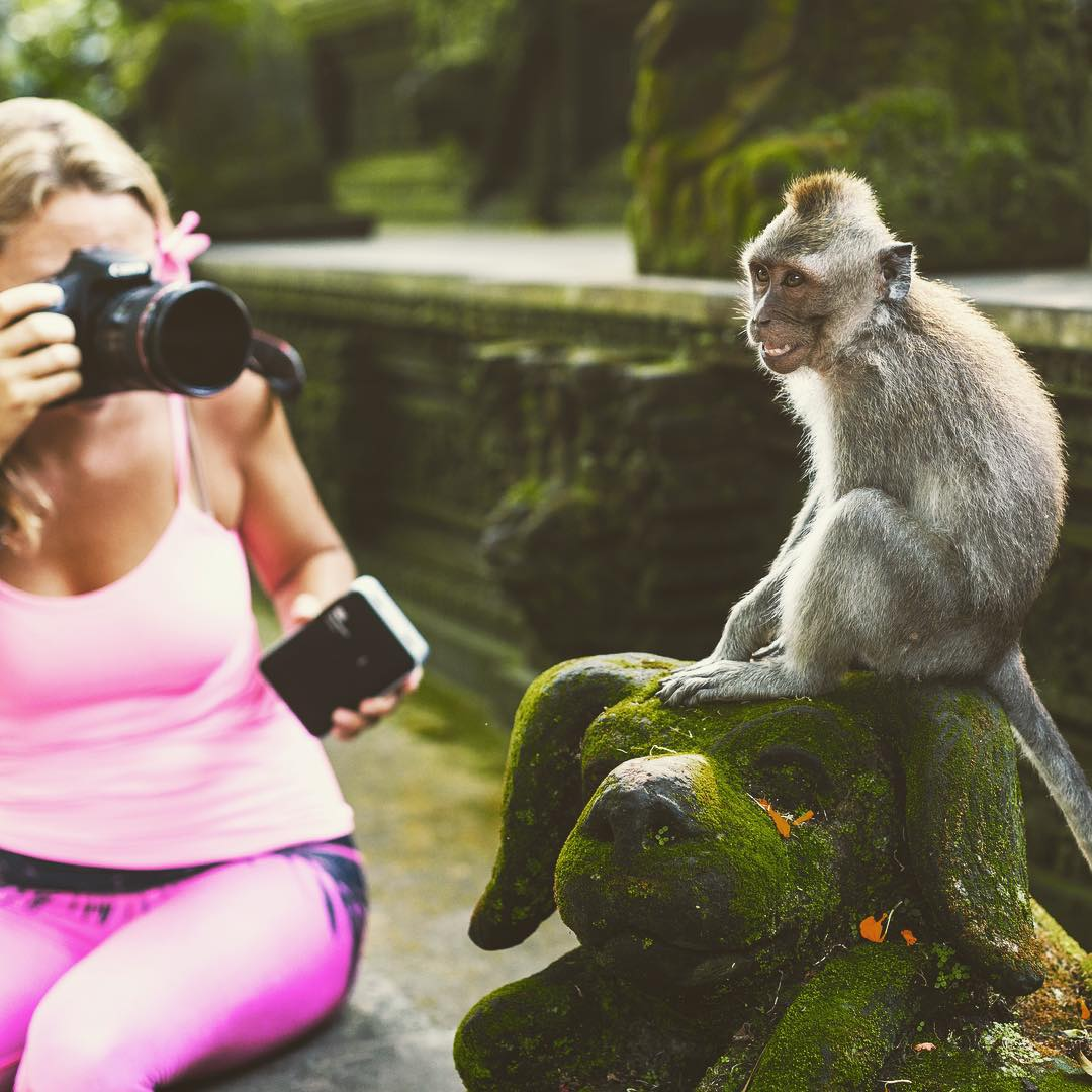 Even the monkeys in Bali know how to put on a cheesy smile for the camera!  Today is the last day of the #AlisonsWildOffice #giveaway with @westerndigital. Go to @alisonsadventures page to find out how to win a portable WD hard drive!