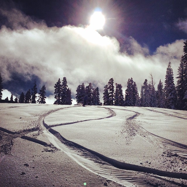 Thriving in Tahoe #fresh #powder #snowboard #sundays #tahoe