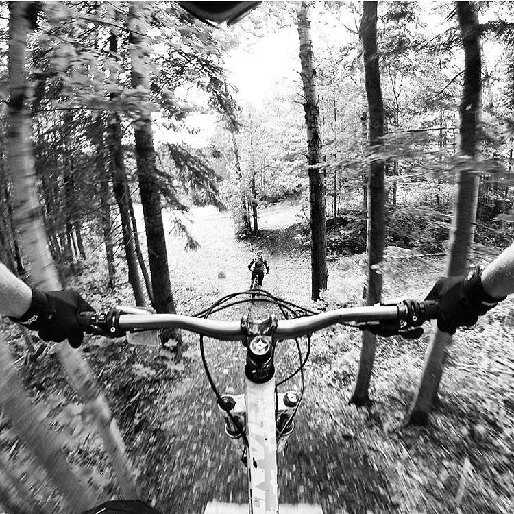 Our final weekly #permissiontoplay winner is @cpolegatto with this awesome black and white POV photo! Thanks to everyone who participated. The contest is over but the fun keeps going! The finals round between all our winners will start next week. Some...