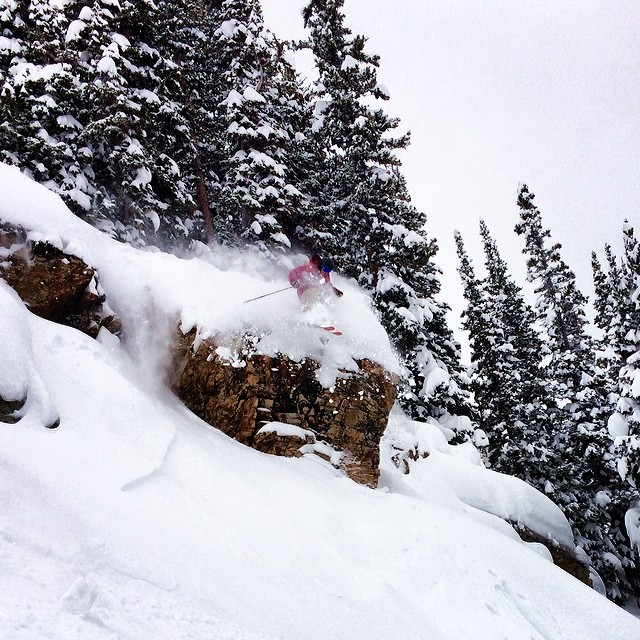 @squirrelbear1 sending on a great surprise pow day at @snowbird today!  #kittenfactory