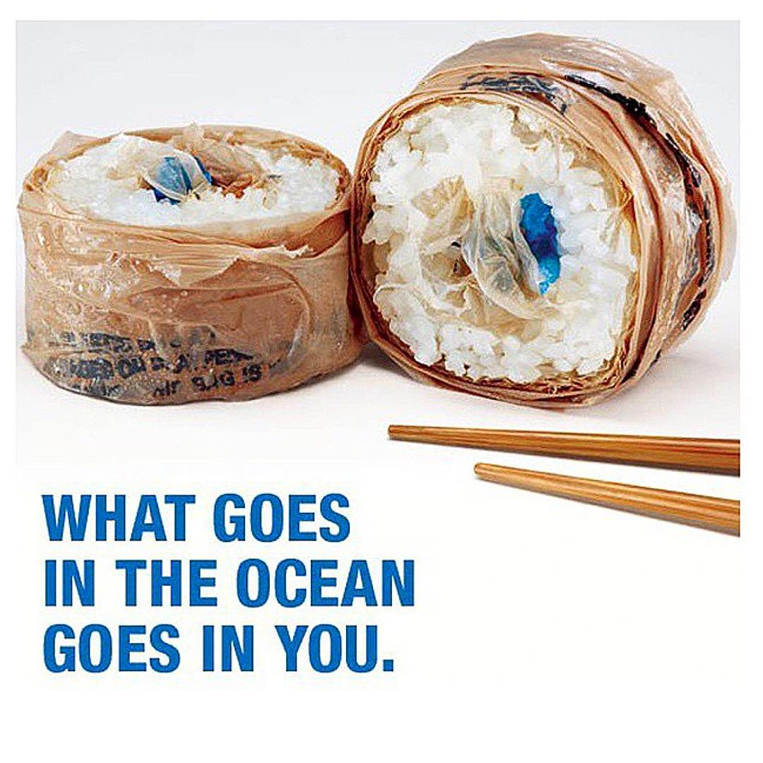 #tbt To one of our favorite #riseaboveplastics ad campaigns @riseaboveplastics #surfrider #sfsurfrider #banthebag #plasticstrawssuck