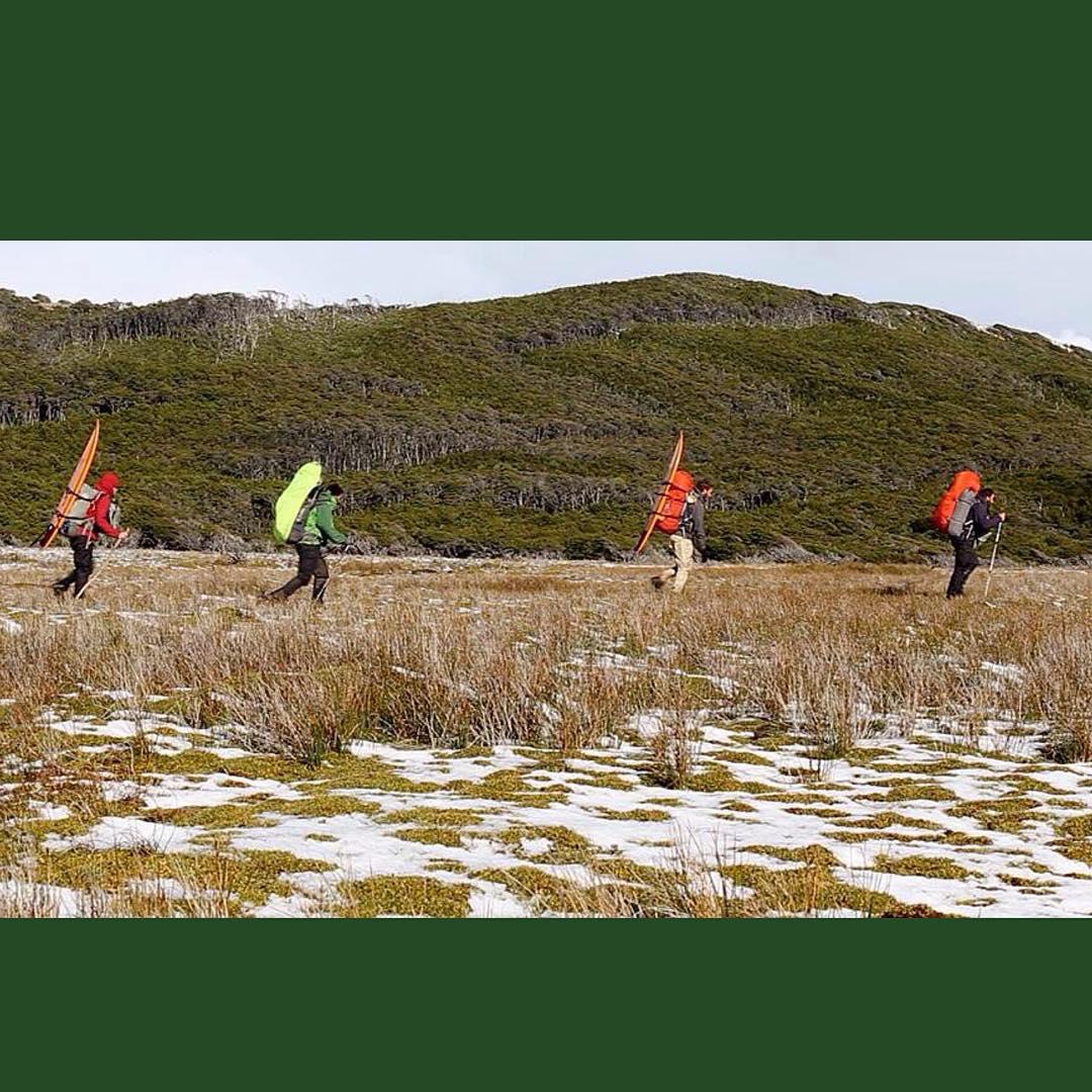 DIA 50 : TURBA - NIEVE - ÑIRES - LENGAS Julian, Silvio, Joaquin y Sergio atravesando un turbal en la costa norte de Península Mitre.