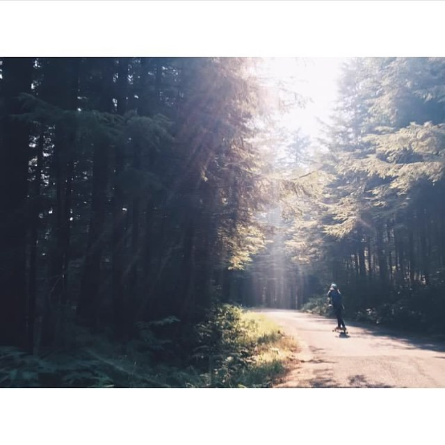 Dreamland ☀️☁️