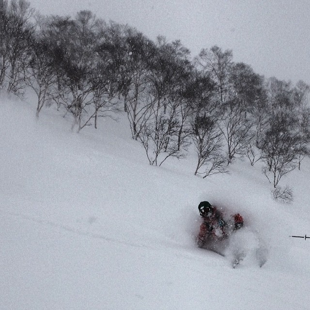 Another refresh hit Niseko, Japan last night. Here is @willcardamone getting it done. #powderwhoresjapan