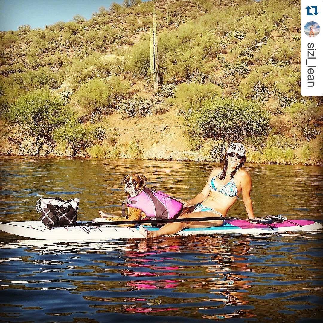 Happy National Dog Day, get out spend some quality time with your pup! #roguesup #nationaldogday ・・・ Out for late afternoon Saturday SUP session with @monicarife1 and @rob.griffin.77 , and of course Sadie,  the wonder dog. @1020outfitters #whatsyour20...