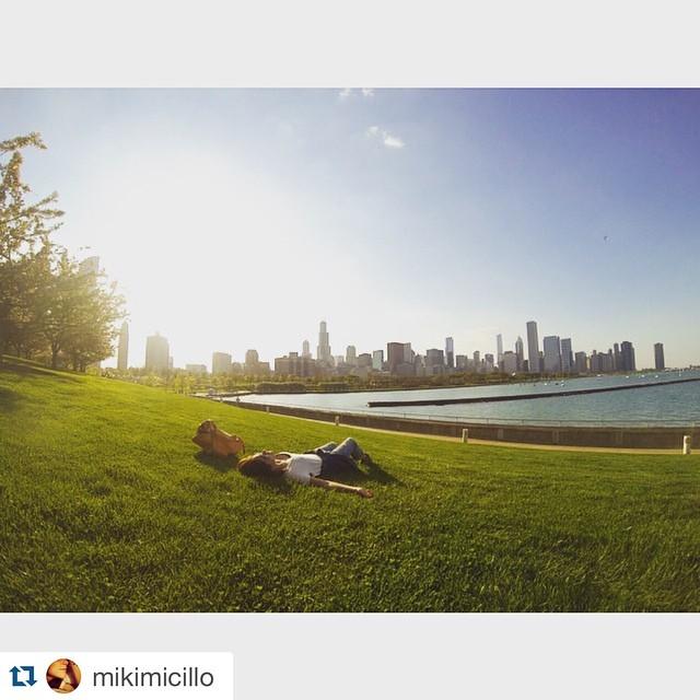 Sigue el concurso #mimambo  #Repost @mikimicillo with @repostapp. ・・・ C H I C A G O