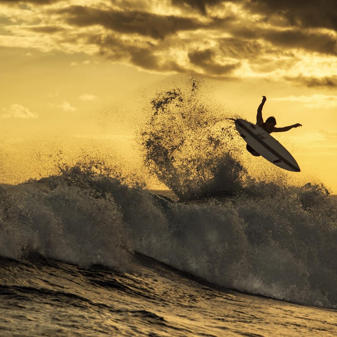 Ninja or Surfer?