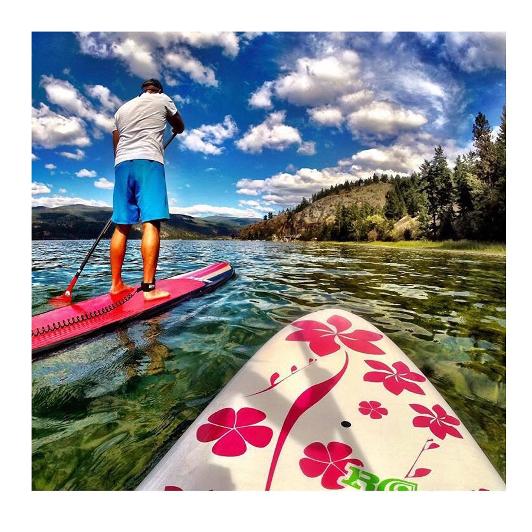 Tuesday board meetings. #roguesup #sup