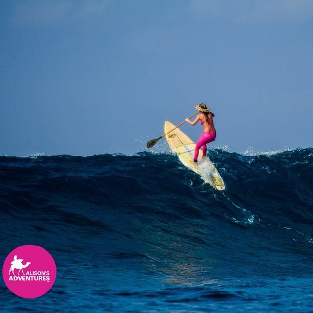 What's SUP?  Coconut hats off to Hawaii winter swell!  @odinasurf @teekigram @naishsup @sawyeroars @hisarahlee photo
