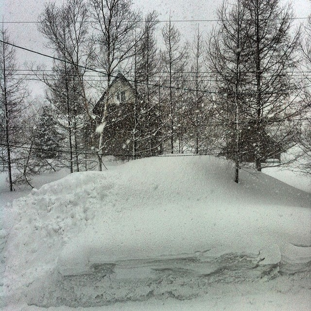 "Looks like Niseko is holding true to it's nickname ""Powder Factory!"" Traveling here...it was snowing, arrived here...it was snowing, went to bed last night... it was snowing, woke up this am...still snowing! Hitting the slopes shortly, I can't wait!!..."