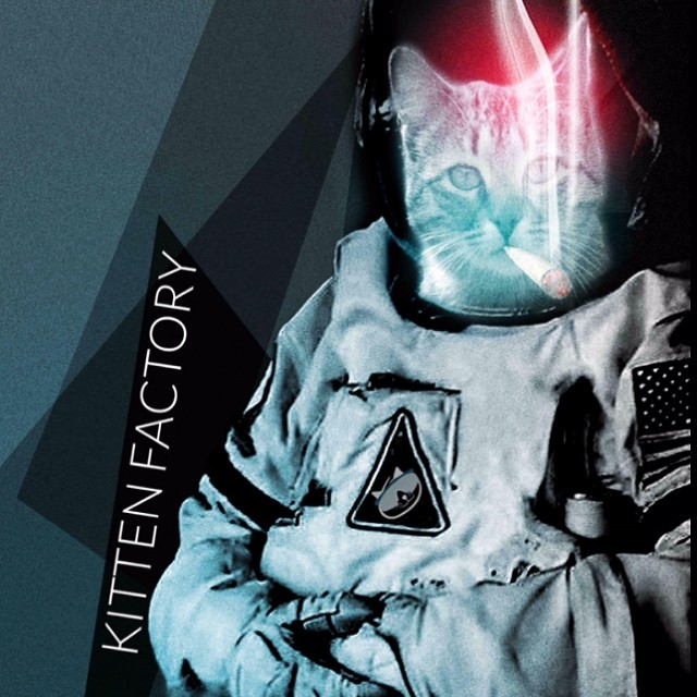 2015 graphic preview.  #kittenfactory #catstronaut