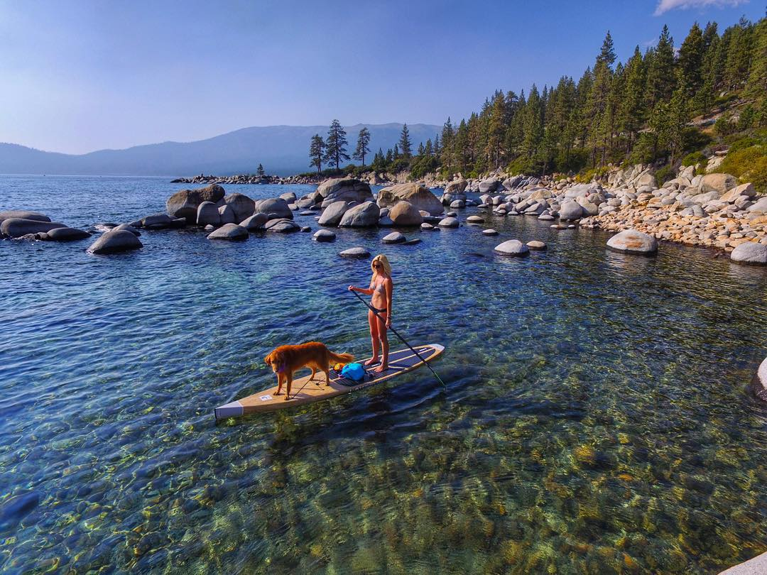This week's challenge is to explore with your favorite pets (and win SOLOs)! To enter: 1) Follow @soloeyewear and this week's featured Creative Ambassador, @breezeturner 2) Post a pic of you and your bud and include #celebratesummer #soloeyewear 3) One...