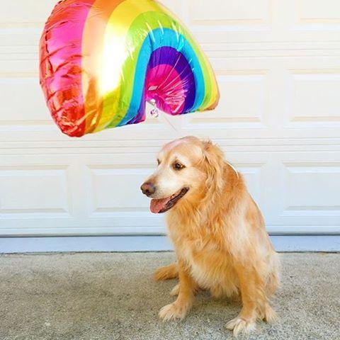 Aca estamos todos con ganas de que salga el #rainbow