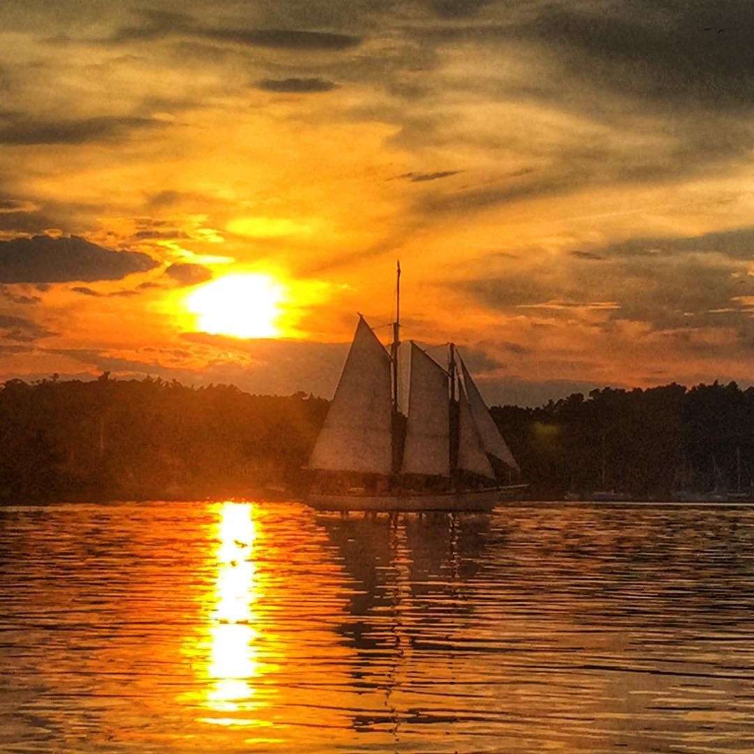 At some point I should just consider a sunset Instagram account.  Schooner Eastwind making her way into the harbor at sunset! #maine #sailing #sunset