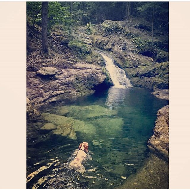 Congrats to @christiholmes with this beautiful shot and awesome caption about stumbling upon a crystal clear swimming hole on a hike in the White Mtns. Always follow the dog's lead.  Thank you to everyone who tagged us in a photo and REMEMBER, we will...