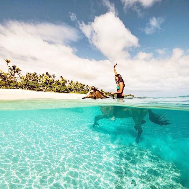 WEEKEND VIBES | READY FOR ADVENTURE @kimi_swimmy #seahorse #waterwoman #sea #leggings #rideintothesunset #weekendvibes #OKIINO
