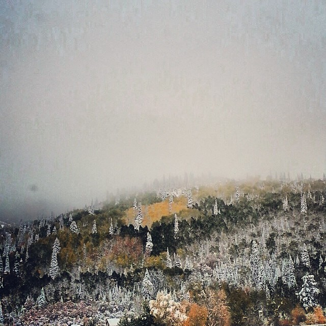The seasons have collided, let the battle ensue #winteriscoming #fallisontheropes #steamboat #colorado @skisteamboat