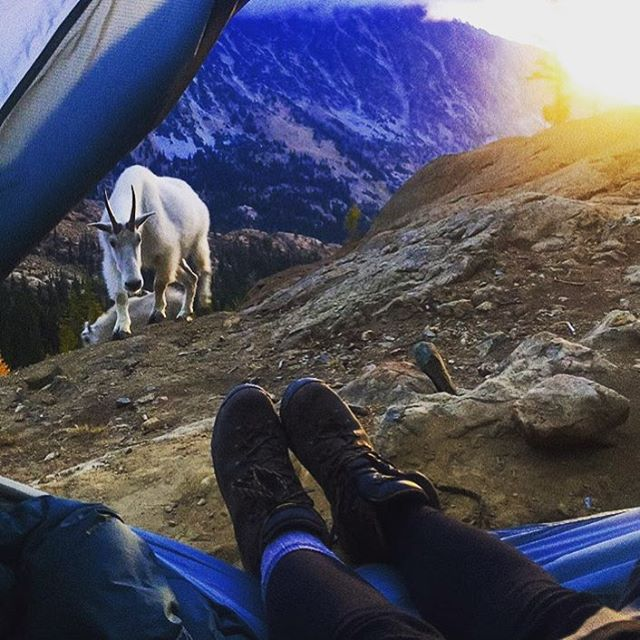 Congrats to the #campeasy contest winner @mrs_sara_argabright -> great story about an impromptu night hike to waking up like this...