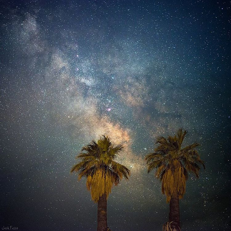 @jackfusco caught the Milky Way peeking out from behind two palms in California. #milkyway #nightsky #getoutthere
