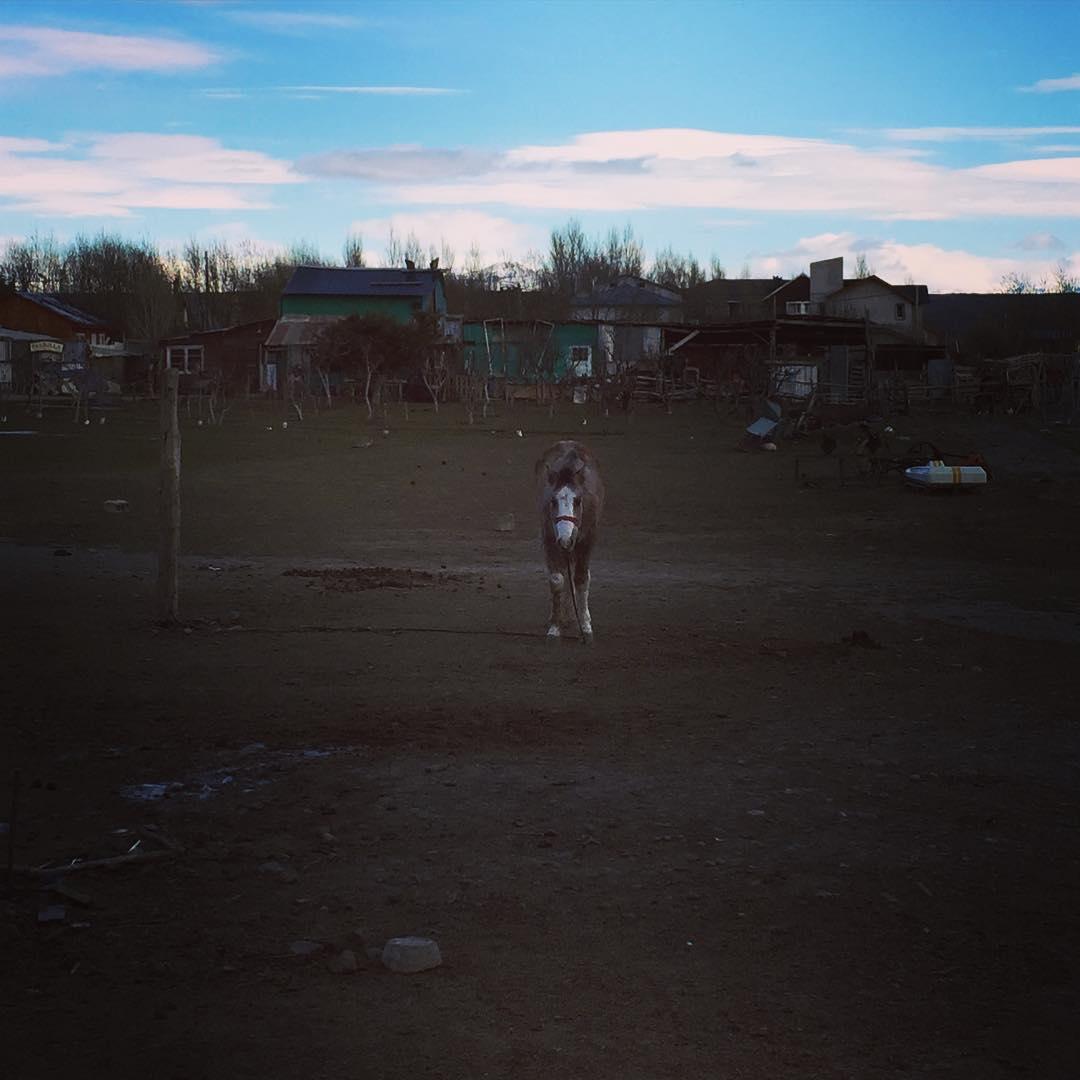 En centro, nos miramos, aprendimos y partimos. #argentina #patagonia #trippingmood