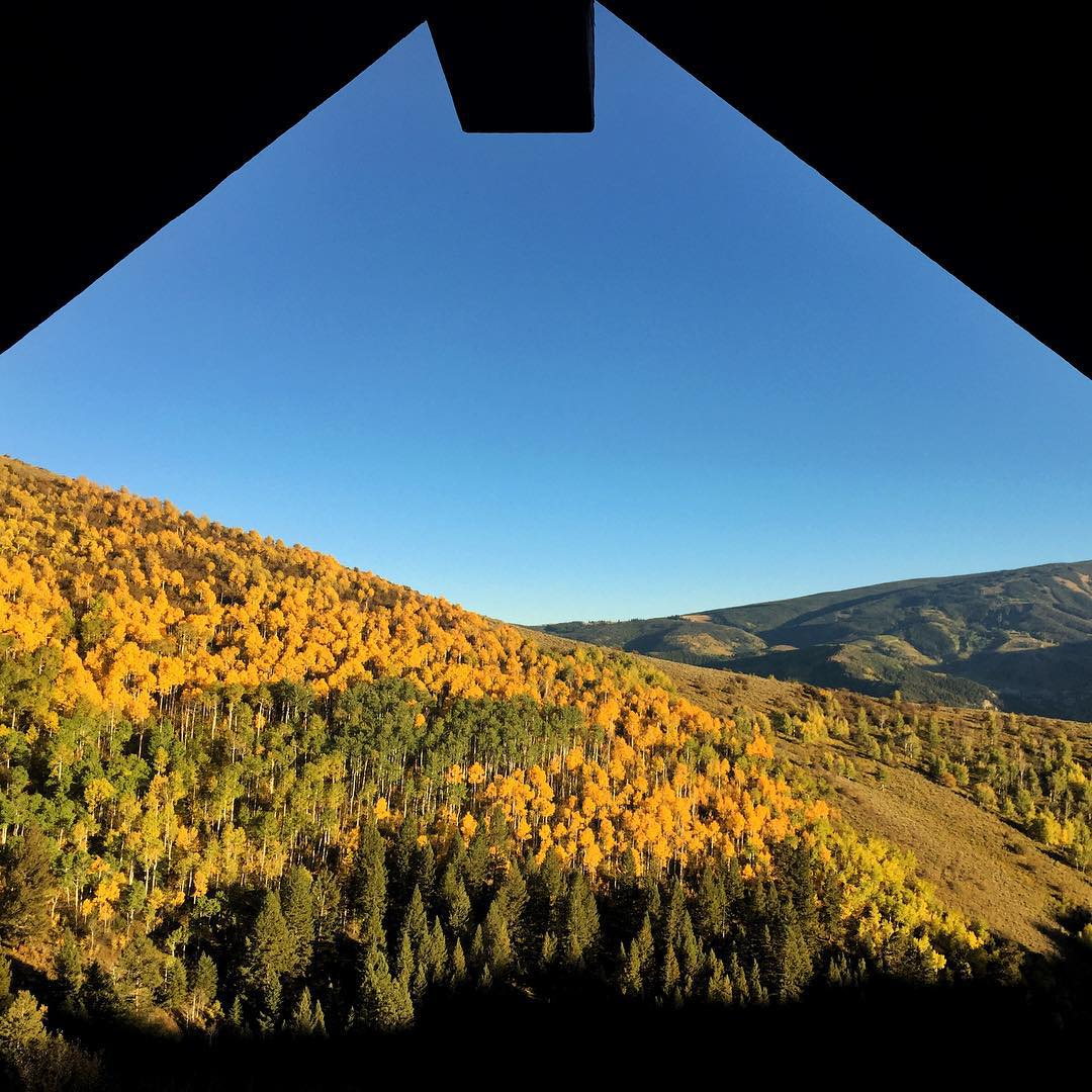 Great fall foliage on this beautiful fall Colorado sunday! #fallfoliage #porch life