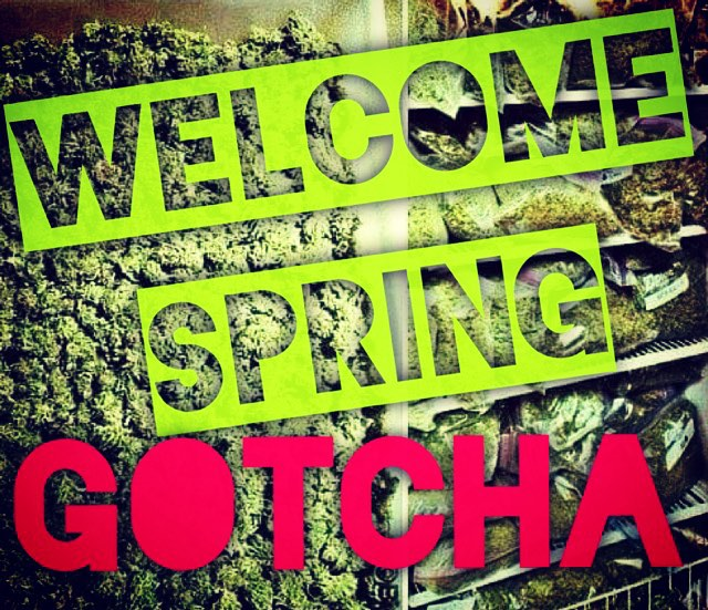 Welcome #spring by @gotchaarg