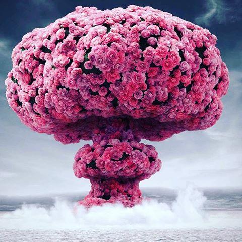 Una #explosion de #flores para tod@s