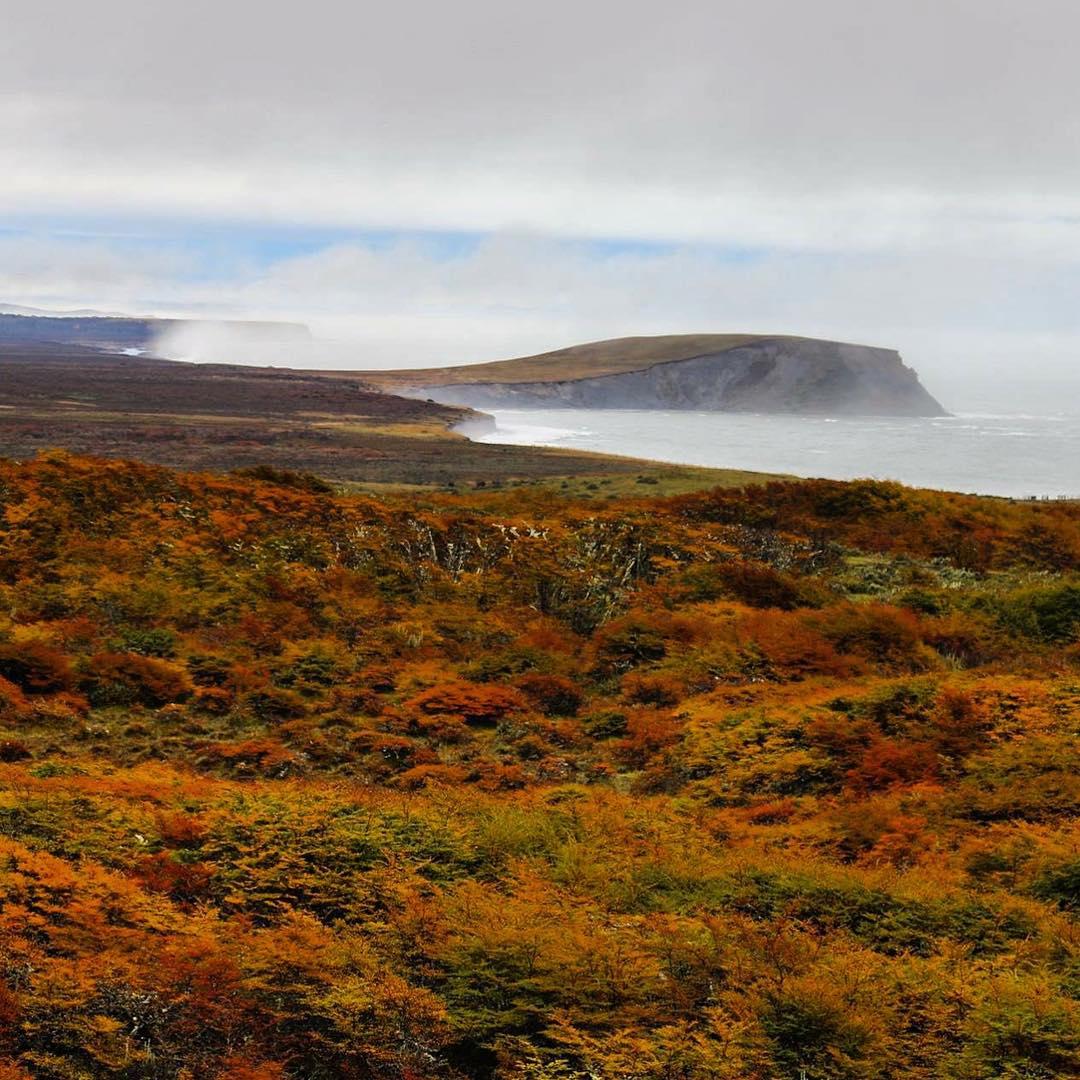 Asi empezaba el otoño en Tierra del Fuego. #tierradelfuego #peninsulamitre