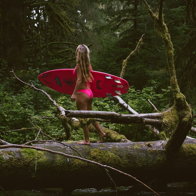 Tipple overheard trees! The forests of British Colombia are magical mossy fairylands...awe inspiring, humbling, fresh....#treehugging