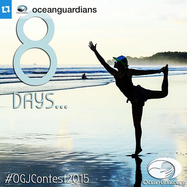 #Repost from @oceanguardians yesterday... Are you ready for the #OGJContest2015?!
