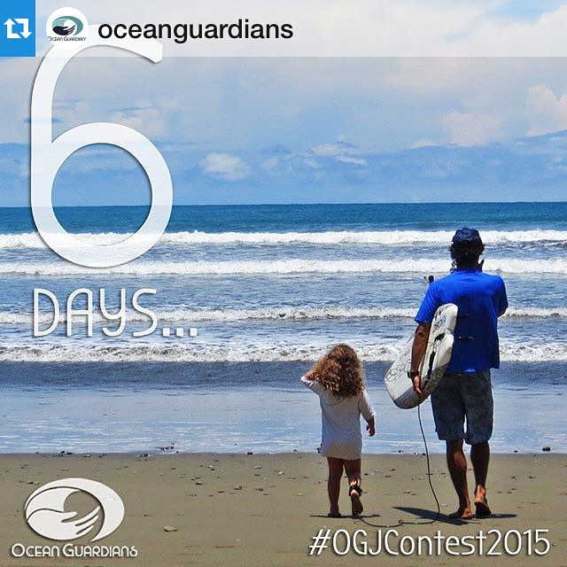 "#Repost @oceanguardians ""Reason #6 to become an ‪#‎OceanGuardian‬ and enter our ‪#‎OGJContest2015‬ To be a positive role model to others! ""A leader is one who knows the way, goes the way, and shows the way"" ~John Maxwell"""