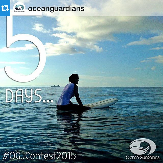 Be a voice for the ocean by being an #OceanGuardian and entering our #OGJContest2015!  #MotherOcean #marineconservation #oceanlove