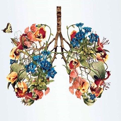Hoy si que se respira #primavera