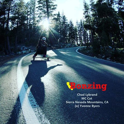It's awesome to see Team riders work together! This month Team rider Yvonne Byers--@yvonzing captured Team rider Chad Lybrand--@ragnars_world sliding an epic road deep in the Sierra Nevada Mountains! Chad is riding our most new skateboard the MC Cat...