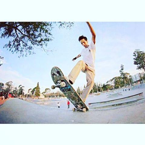 @nicolas_hernandez_ // FS BLUNT #GTCH #skateboarding