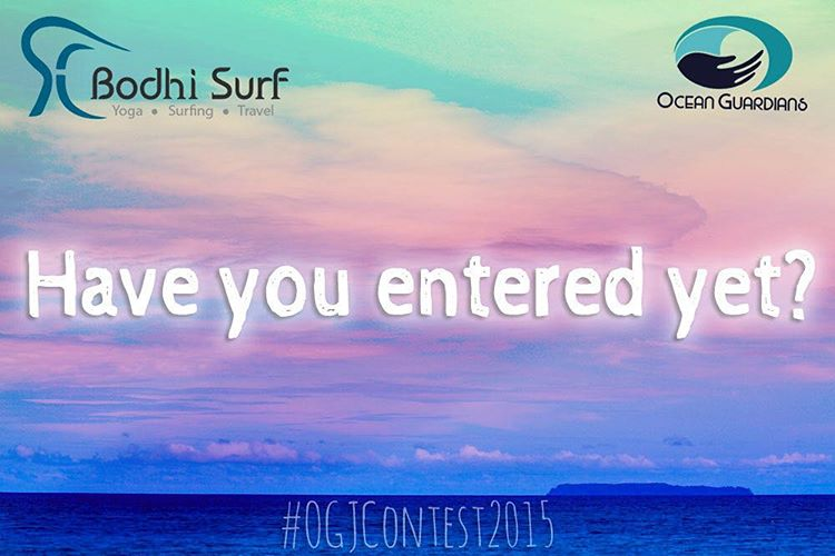 The stakes are high... A FREE 7-day yoga and surf camp for two people in Costa Rica!  Be an Ocean Guardian and show us what you are doing to protect the world's oceans!  #OGJContest2015 #OceanGuardians