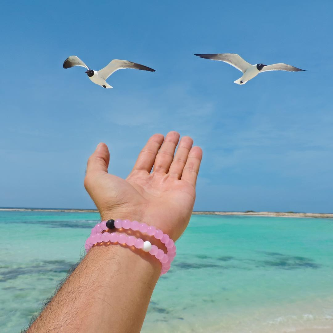 Free spirits #lokaihero #livelokai  Thanks @christianbendeck