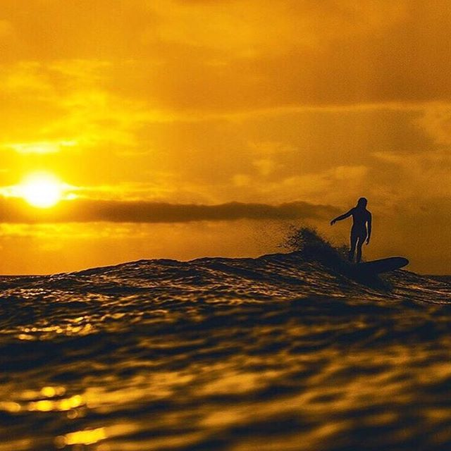 Nothing beats the feeling of a good sunset session @ashleyjohnstondesign  shot by @brycejohnson  #seeababes #myseealife