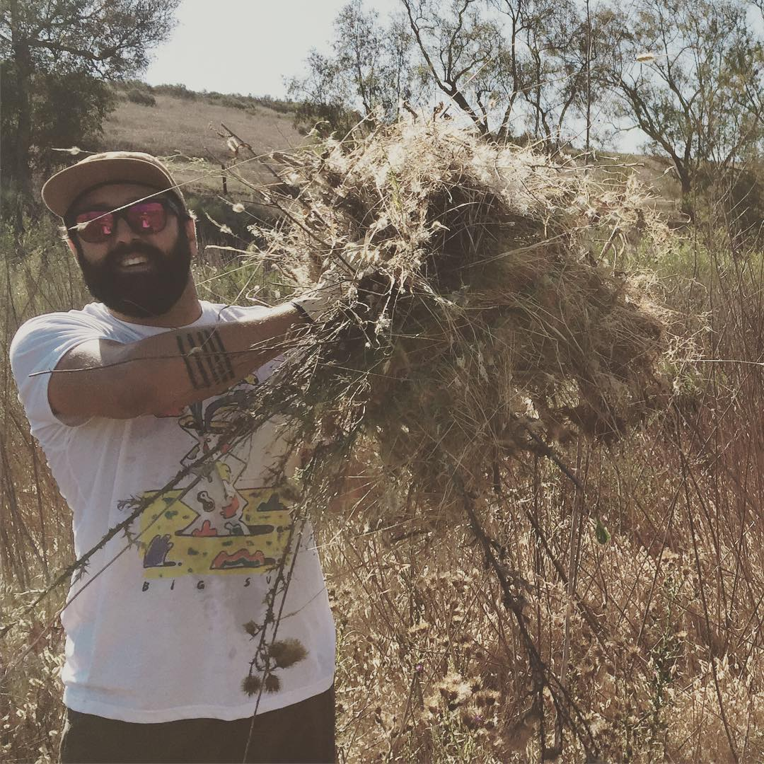 A L L  U P  I N  D A  W E E D S @thefriendlybeard taking out invasive species like it's his hobby. Your volunteer crew friends got a lot done this last weekend with the help of @seedpeoplesmkt  #radparks #nixnaturecenter #habitatrestoration #ocparks...